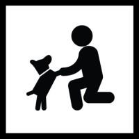 Familienhund – spielend Freunde werden