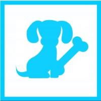 Junghunde (JuHu 4)